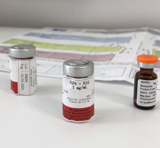 papillomavirus nouveaux traitements)